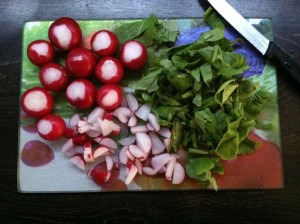 Russian Cold Soup - Radishes